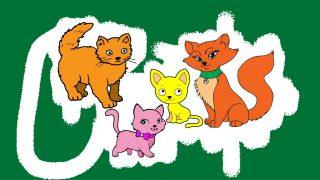 CAT Colouring