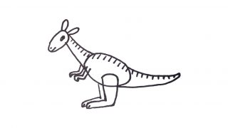 How to draw a Kangaroo for kids