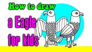 How to draw a Eagle for kids