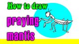 How to draw a Praying Mantis kids