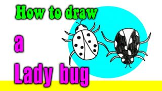 How to draw a Lady bug for kids