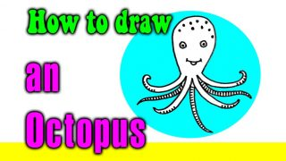 How to draw an Octopus for kids