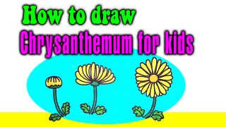 How to draw a Chrysanthemum for kids