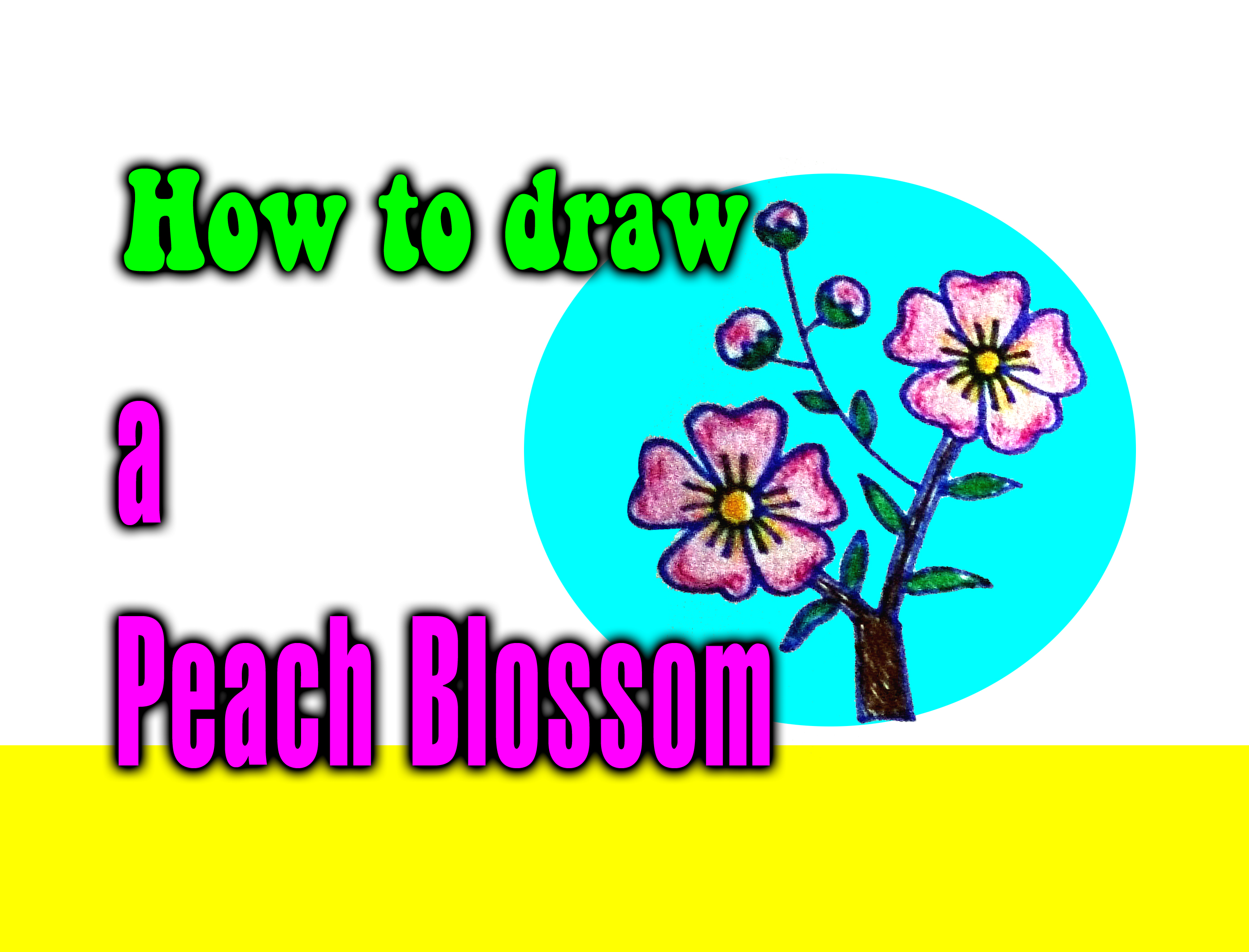 How to draw a Peach Blossom for kids - drawingsforkids.net
