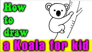 How to draw a KOALA for kid