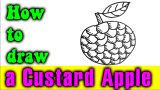 How to draw a Custard Apple easy for kid