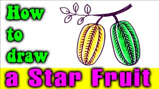 HOW TO DRAW A STAR FRUIT FOR KIDS