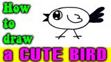 How to draw a CUTE BIRD for kid